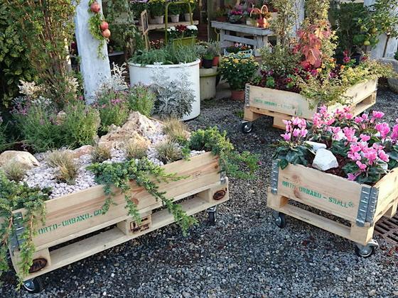 Ящики для цветов из поддонов своими руками 94