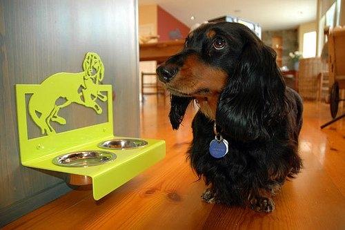 миска для собак,миска для кошки,миска  настенная ,домашние питомцы