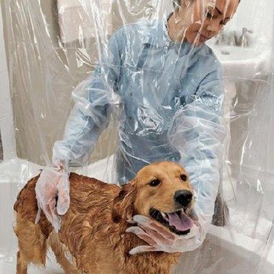 собака,мыть,шторка,душ