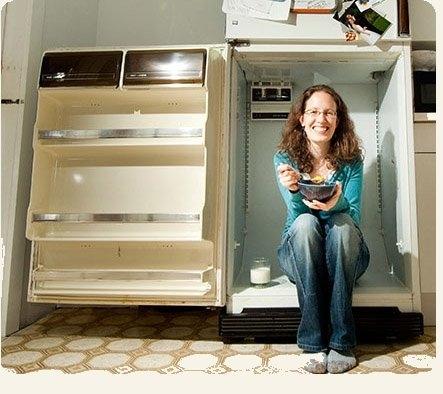 холодильник,старый холодильник,веган