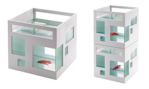 аквариум,отель,рыбки