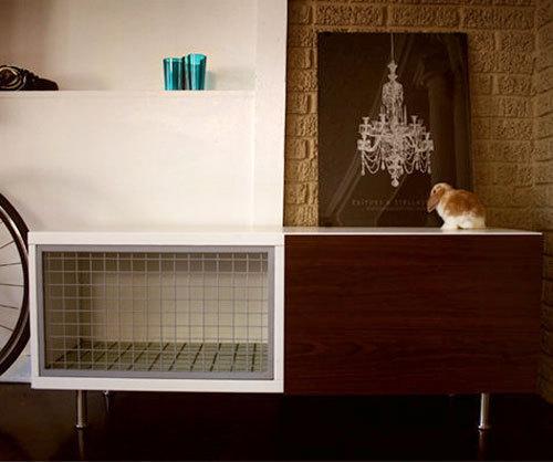 клетка,мебель,кролик