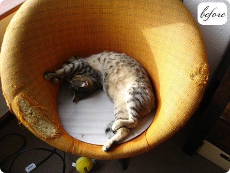 кошка,кресло,мебель