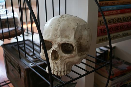 черепа,куклы,чучела,когти,интерьер,мемаробили,меморабили,панк,