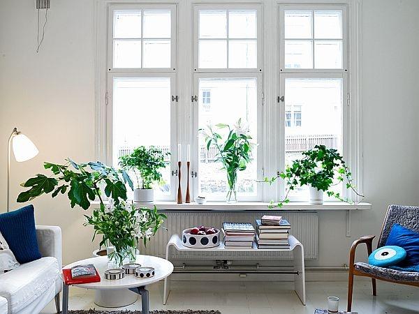 квартира,дизайн,фото,белая квартира,спальня,зал,прихожая,окна,кухня