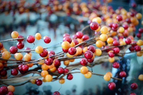 венок,ягоды,осень