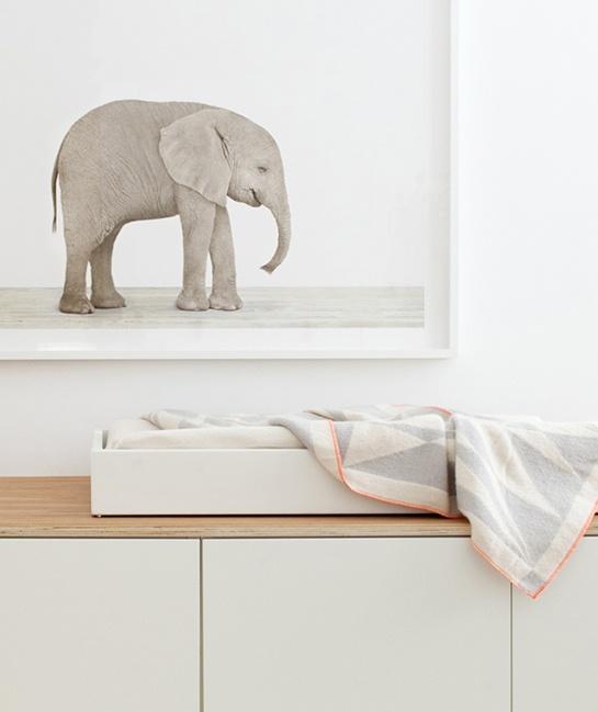 детская,комната,интерьер,фото,кровать,слон,пол,ковер