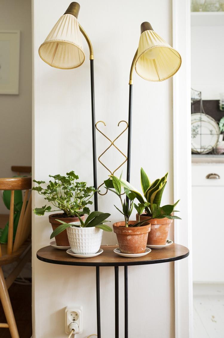 светильник,горшки,цветы,лампа