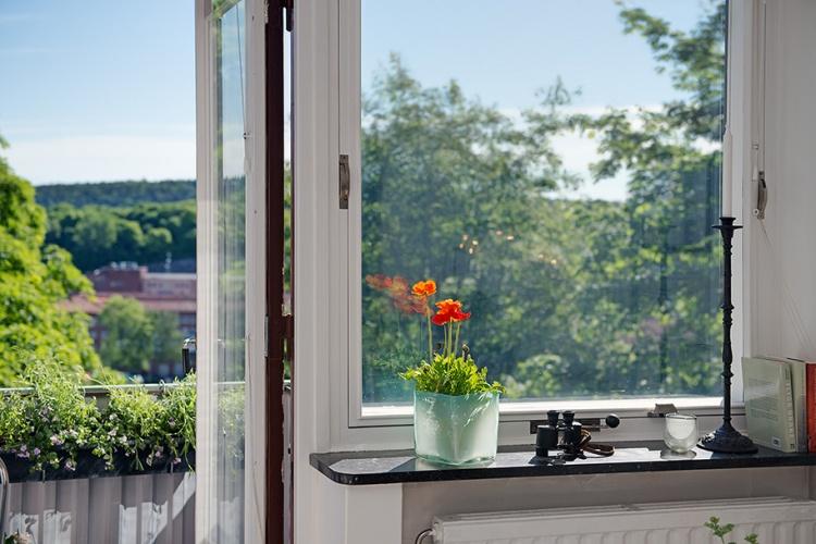 балкон,окно,подоконник,цветок