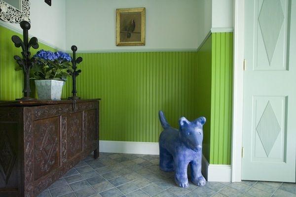 собака,коридор,стена,салатовый, краска