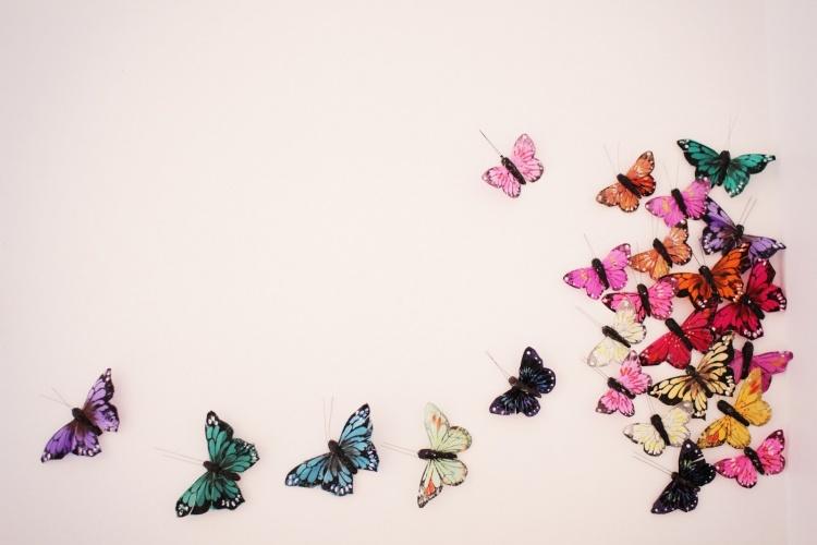 бабочки на стене, украшение стены бабочками,пример,фото